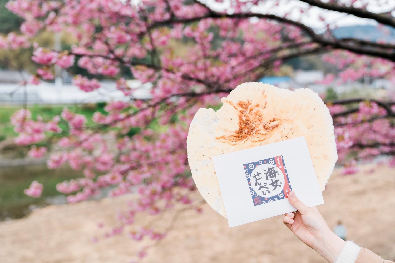 河津桜まつりの様子7