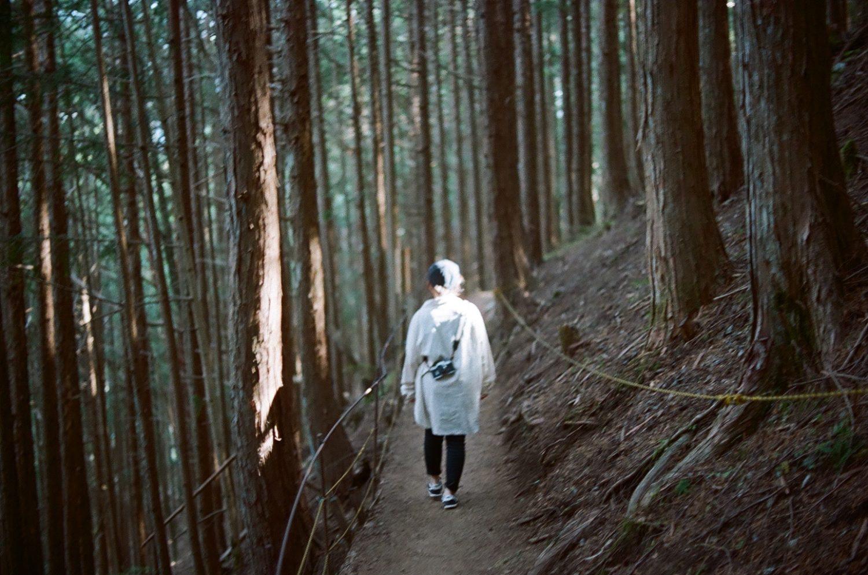 遠山郷の自然を歩く