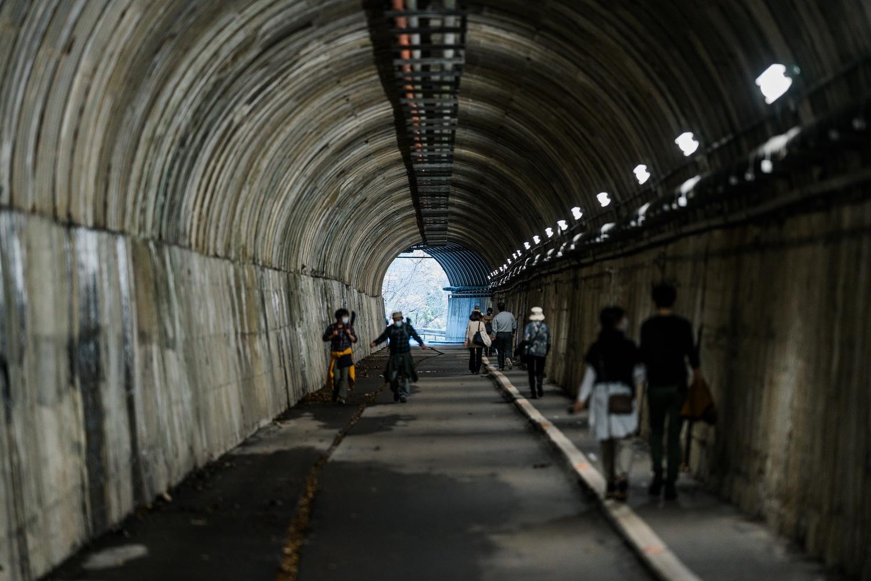 途中こんなトンネルもあったりする