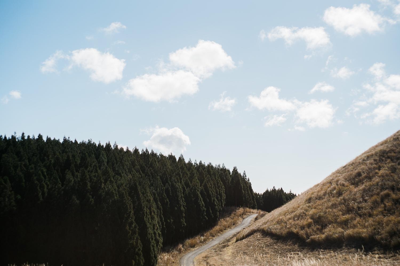 ハイキングコースが美しい