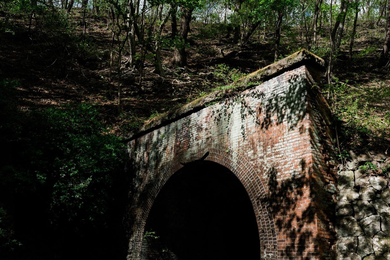 トンネルと木漏れ日