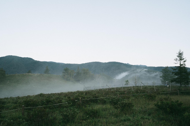 山頂まであと10分のところで霧が発生